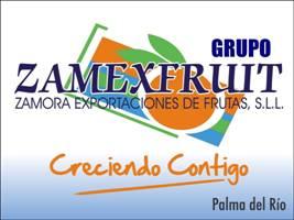 Grupo ZAMEXFRUIT